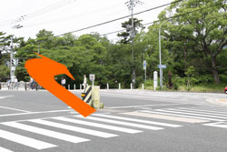 2.1つ目の信号、夙川橋交差点を右折し夙川さくら道を直進
