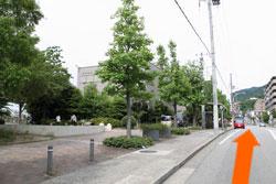 8.左側に樋之池体育館、次の信号まで直進、交差点を左折すると右手に当院