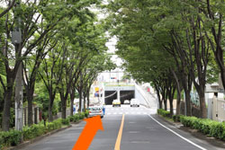 経路写真d-8